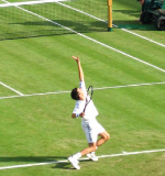 home-wimbledon-tennis